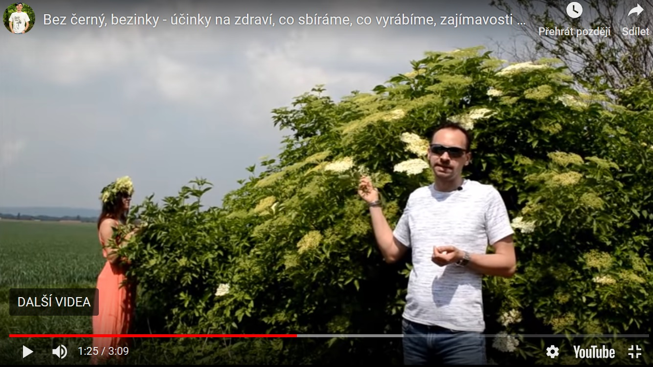 bez cerny bezinky video